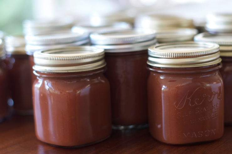 Spiced Apple Butter - A Pat & A Pinch