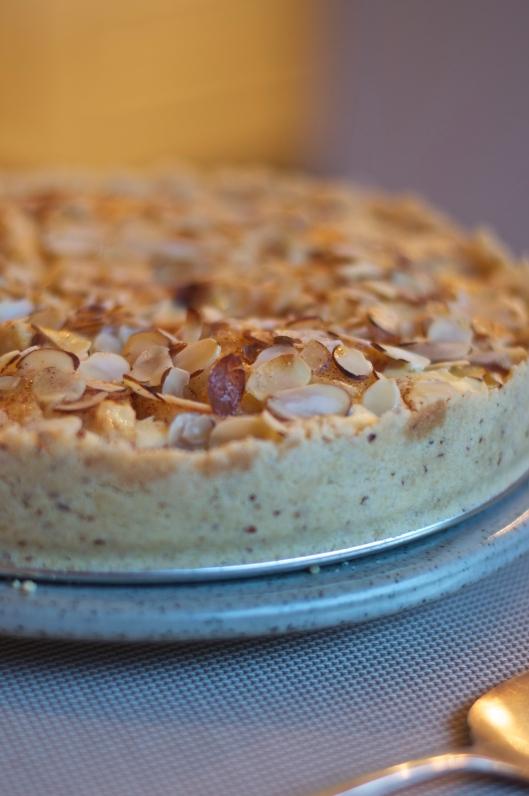 Nancy's Apple Torte - A Pat & A Pinch