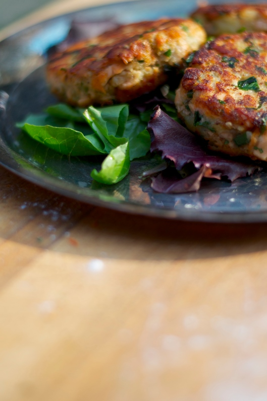 Indian Spiced Salmon Cakes - A Pat & A Pinch